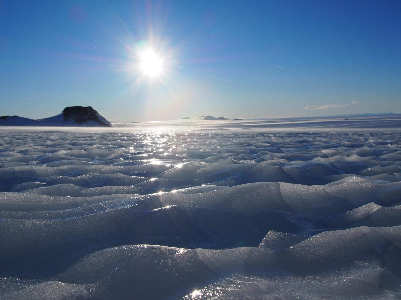 картинки арктической пустыни летом и зимой межкомнатных