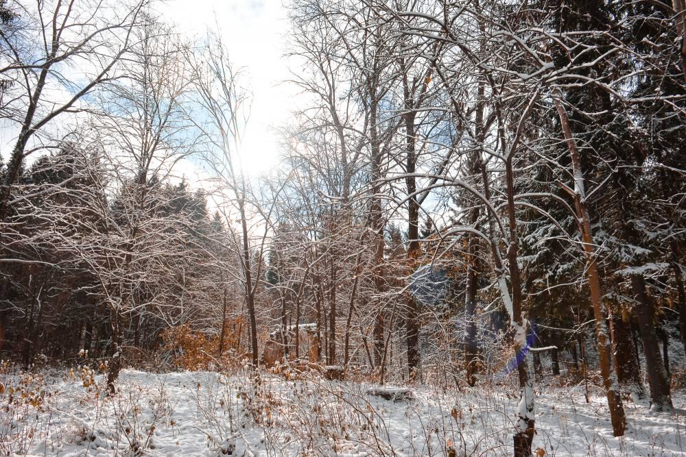 «Глобальное потепление»: прогноз погоды на январь в Пермском крае