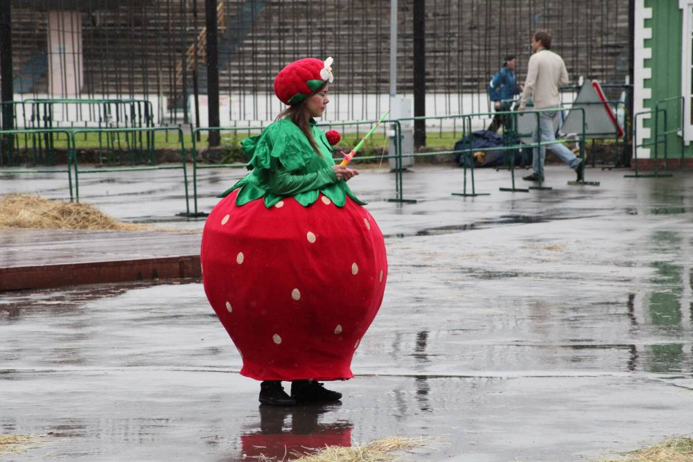 Заморозки и дожди: синоптики рассказали о погоде на майские праздники в Пермском крае
